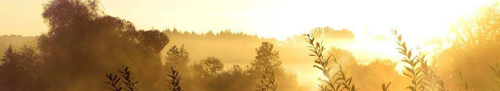 Arhiiv: <span>Events</span>
